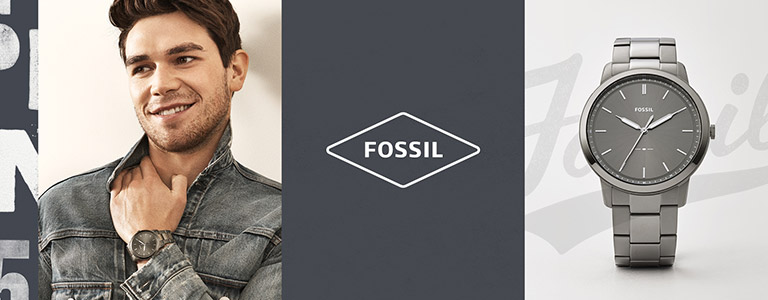 <h1>Fossil Gents horloges</h1>