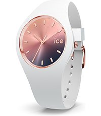 015749 ICE Sunset 41mm